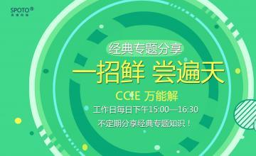 【2016.07.29】一招鲜,尝遍天--CCIE正解