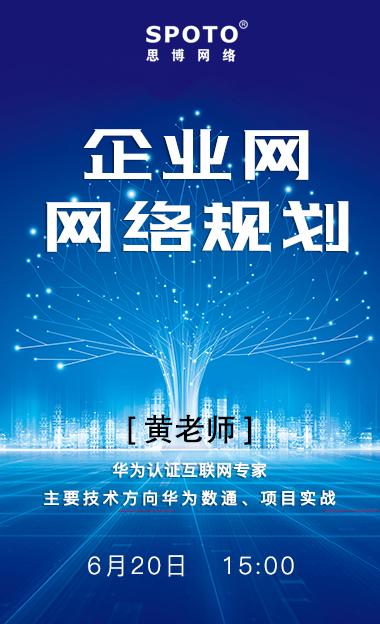 企业网网络规划