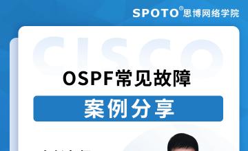OSPF常见故障案例分享