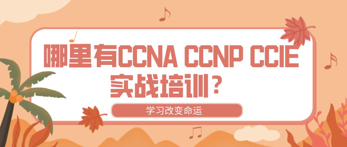 哪里有CCNA CCNP CCIE实战培训?