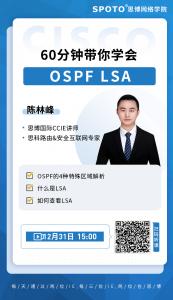 60分钟学会ospf lsa