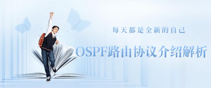 OSPF路由协议介绍解析