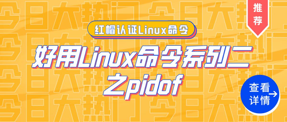 好用Linux命令系列二之pidof