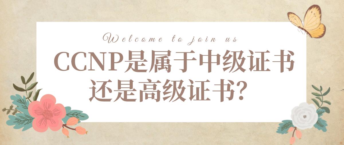 CCNP是属于中级证书还是高级证书?
