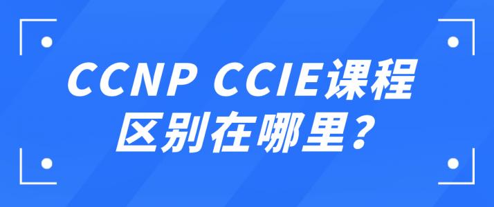 CCNP CCIE课程区别在哪里?